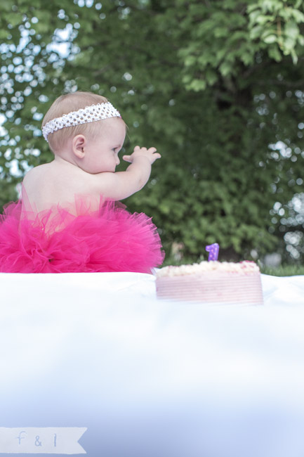 feather + light photography | Philadelphia area child + family photographer | cake smash