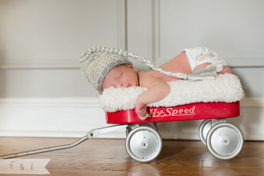 feather + light photography| newborn photographer West Chester, PA | Mainline Newborn Photographer