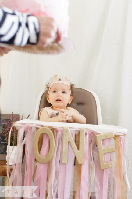 Emerson Belle S First Birthday Party West Chester Pa