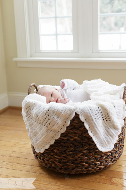 feather + light photography | Main Line, PA  newborn photographer |