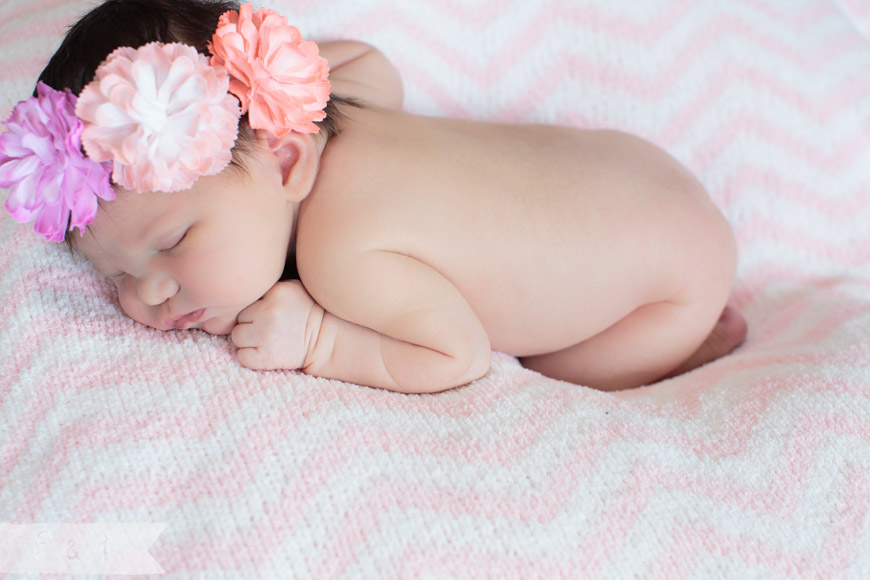 feather + light photography | main line, pa newborn  photographer | pink + white | floral