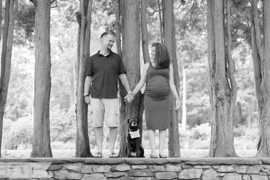 feather + light photography | maternity lifestyle photographer | main line ,pa maternity photographer | ridley creek state park