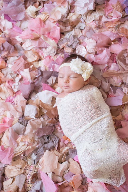 feather + light photography | west chester, pa newborn photographer | feminine nursery | baby girl |