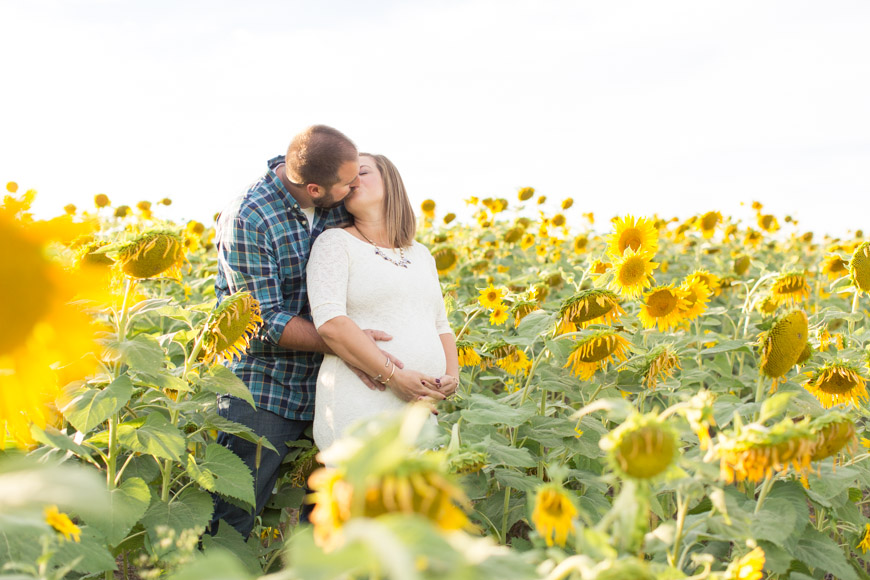 feather + light photogarphy | sunflower maternity session