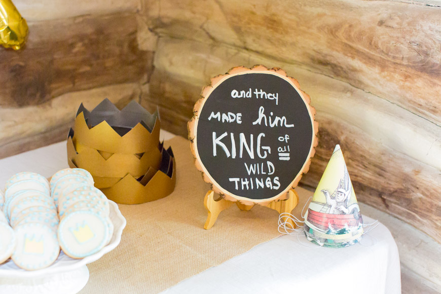 feather + light photography | where the wild things are birthday party | wild thing